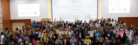 The Sixth Mycetoma International Conference, Khartoum, Sudan, 2019.